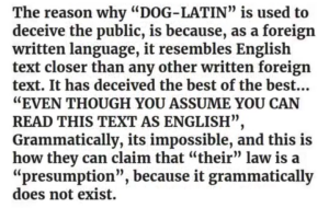 dog-latin7